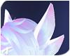 Luna | Ears 5