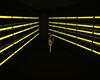 J36 Black & Gold Tunnel