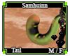 Samhuinn Tail