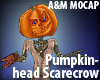 Pumpkin-head Scarecrow