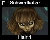 Schwertkatze Hair 1
