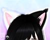 N' Tao Cat Ears