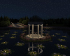 Spacious Night Park