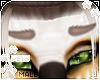 [Pets] Evy | brows