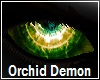 Orchid Demon Eyes