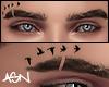 A' Nathan Eyebrows Birds