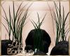 {liz} Plants & Rocks