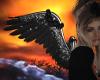 Animated Wings (Black)