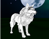 Great White Wolf
