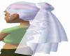 (heavenly) hair and veil