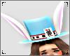 ♥ Alice Hat