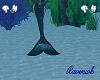 black silver tail