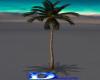 1520   Swaying Palm