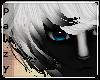 e Skunki |H 1
