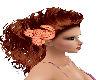 Peach / Red Hair Flowers
