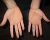 Nice Small Women Hands