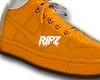 Rpz 1.0