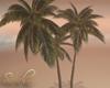 """""""SAV"""" BEACH PALMS"""