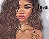 J | Darleen brunette