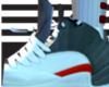 jordans 12 cool greys