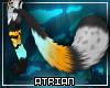 A| Mirage Tail V2