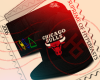 Chicago Bulls TI$A