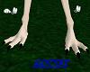 gull feet