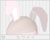[Q] Pinku Bunny
