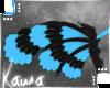 | Shiki | Wings 2