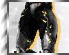 SilverBlack*Pants