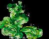 Green Leaves -L