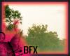 BFX Spring Essentials