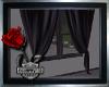 ~DN Double Curtains~