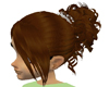 Brown Classic Hair