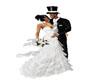~S~  Wedding Pose 10