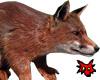 Foxy Squirl