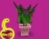 Mobaby711 Fern