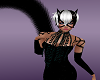 Black Cat Bundle