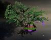 S.S~BEAUTY TREE HOUSE