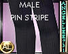 PIN STRIPE PANT MALE