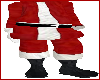 Exclusive Santa Suit