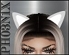 !PX ANIMATED CAT EARS