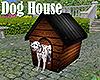 [M] Dog House