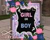 Gender Reveals Frame