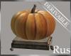Rus DER Fall Pumpkin Dec