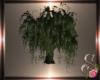 $$ Animated Willow Tree
