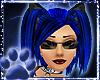 ~WK~BlueBlackSpice