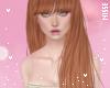 n| Pakira Ginger