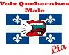 Voix Quebecois Male