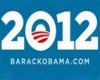 Obama 2012 Lapel Pin M